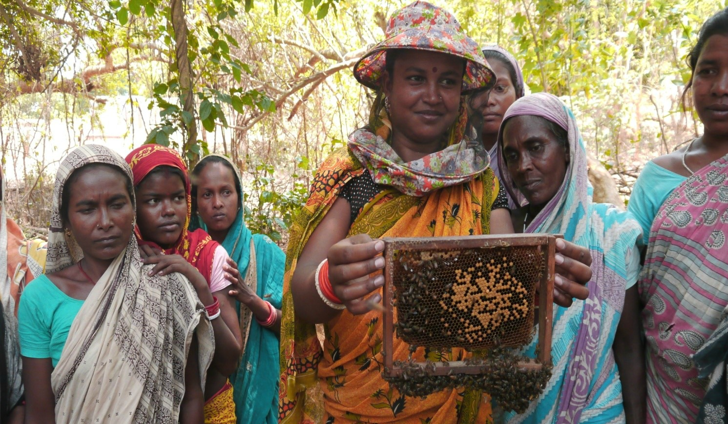 Jani's Story: Changing lives through beekeeping